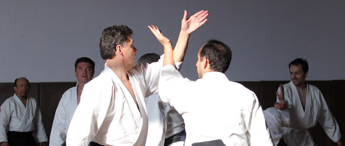 Stage National Aikido Palmier Laon